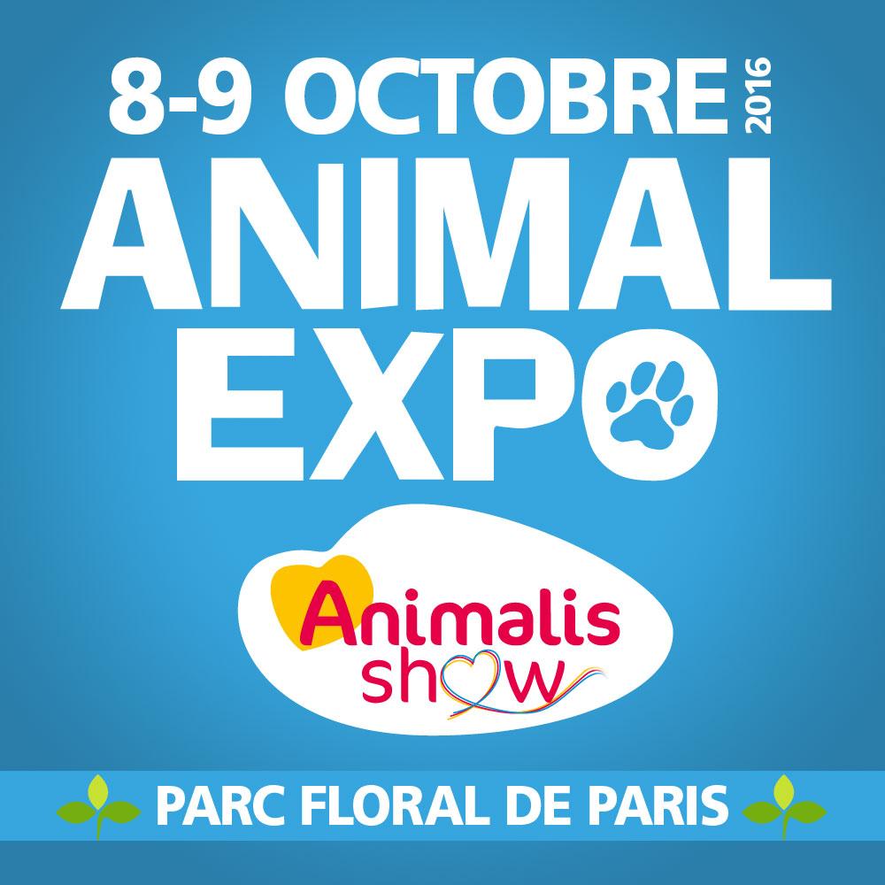 Affiche animal expo Dogwash.fr