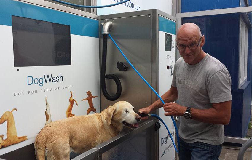 Chien et son maitre dans une station de lavage canin