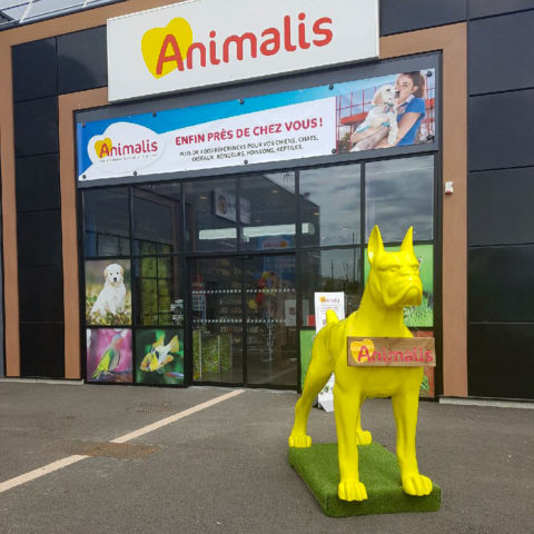 animalis-bergerac-dogwash