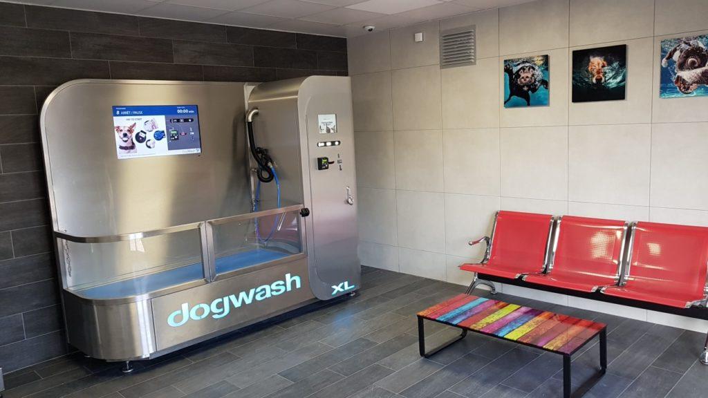 dogwash-lozere