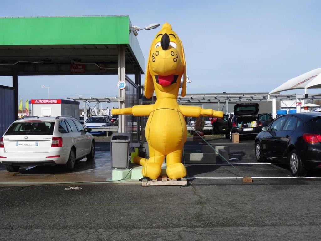 mascotte-dogwash-tours