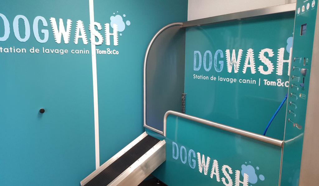 dogwash-tom-and-co