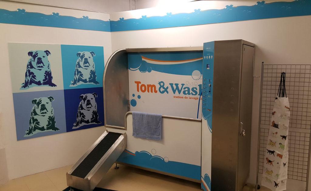dogwash-tom-and-wash