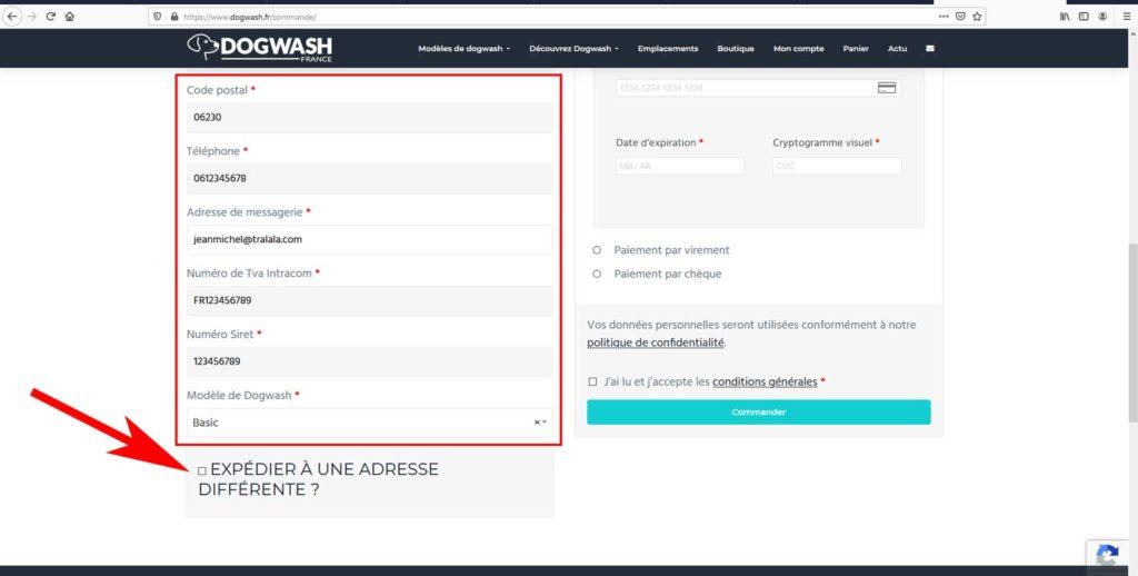 Boutique en ligne dogwash : étape de commande N12