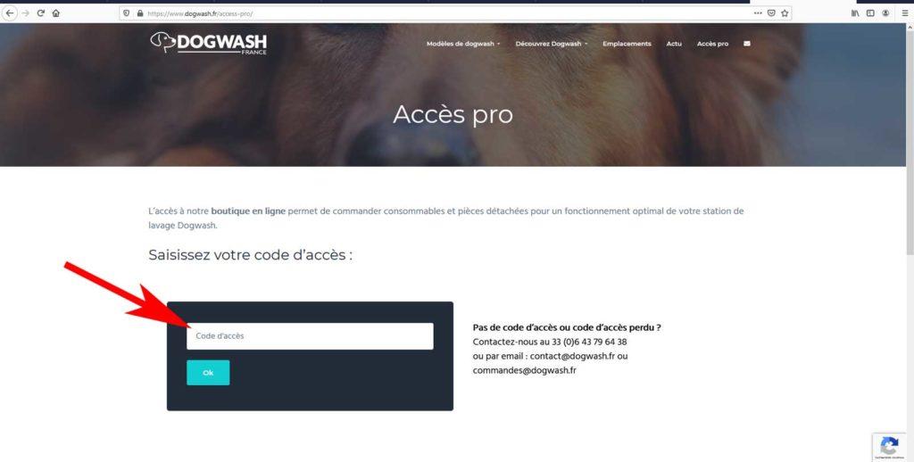 Boutique en ligne dogwash : étape de commande N1
