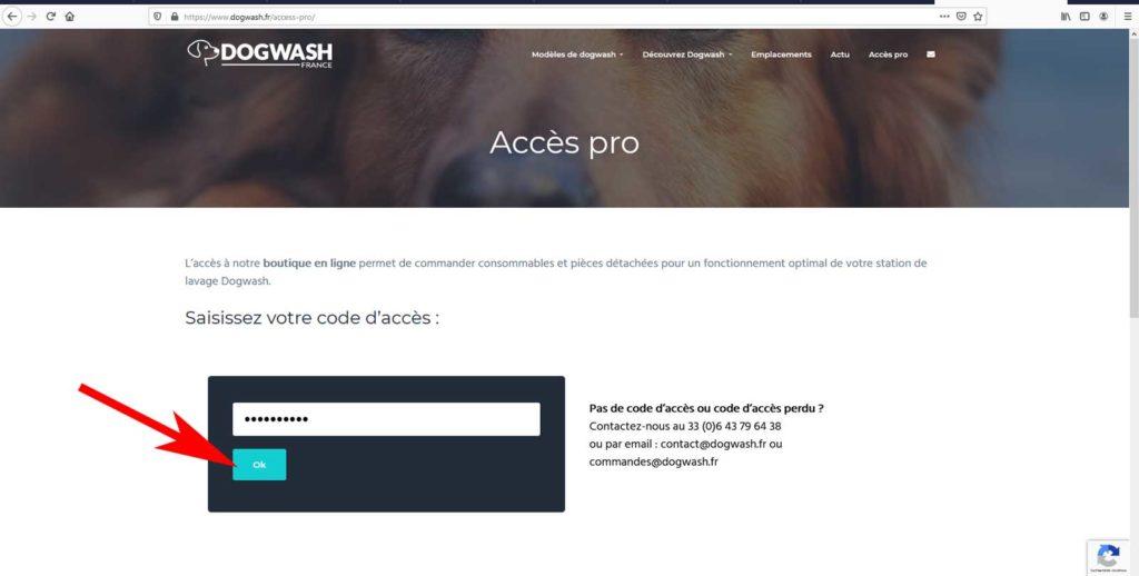 Boutique en ligne dogwash : étape de commande N2