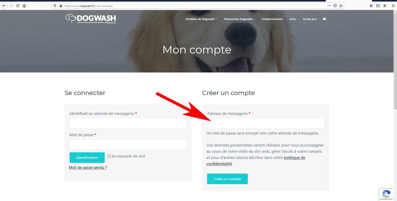 Boutique en ligne dogwash : étape de commande N4