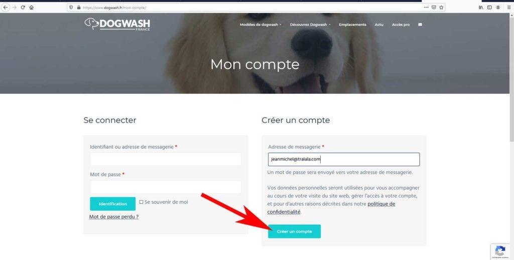 Boutique en ligne dogwash : étape de commande N5