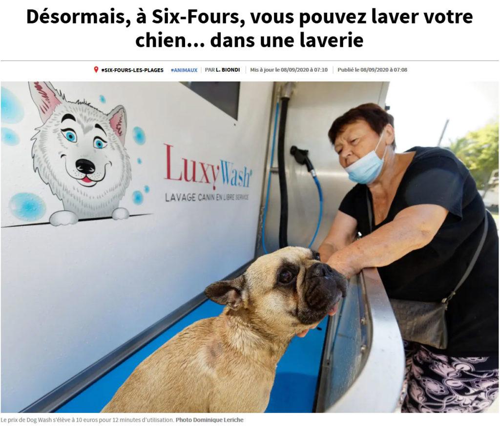Dogwash SixFours